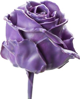 Цветы из воска