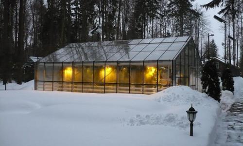 Теплица зимний сад