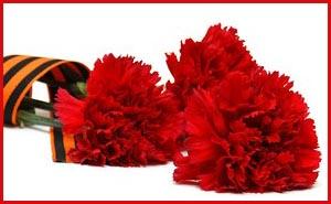 Какие цветы дарят на 9 мая ветеранам