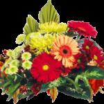 Какие цветы пользуются спросом на 1 сентября