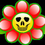 Какие комнатные цветы ядовитые