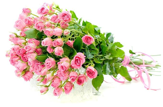 Сколько цветов можно дарить живому